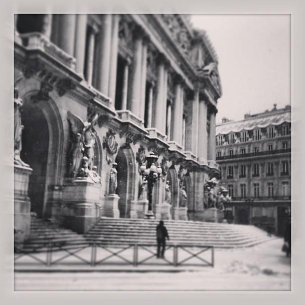 Garnier sous la neige @lepetitrat sous Instagram