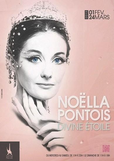 Exposition Noëlla Pontois, divine étoile à elephant paname