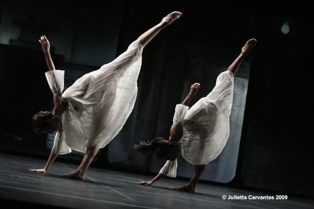 Glacial Decoy de Trisha Brown